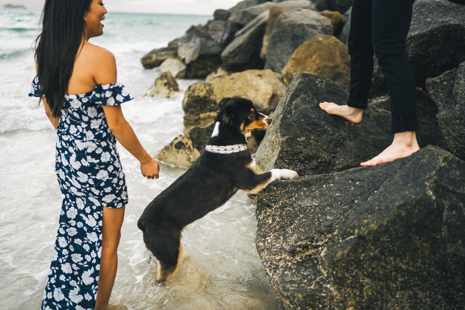 engagement photos with dog